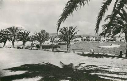 """CPSM FRANCE 83 """"Sanary sur Mer, quai des Palmiers"""""""