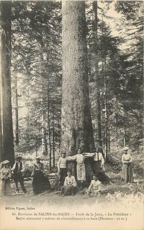 """/ CPA FRANCE 39 """"Environs de Salins les Bains, forêt de la Joux"""""""