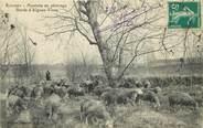 """13 Bouch Du Rhone CPA FRANCE 13 """"Rousset, moutons au pâturage"""""""