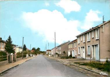 """CPSM FRANCE 49 """"Villedieu la Blouère, les castors"""""""