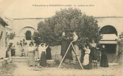 """CPA FRANCE 30  """"Notre Dame de Rochefort du Gard, la cueillette du tilleul"""""""