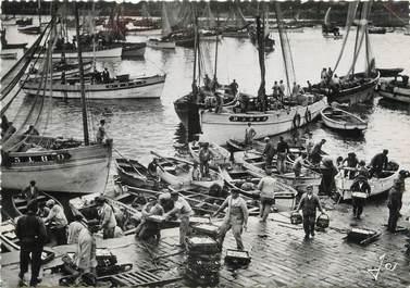 """/ CPSM FRANCE 29 """"Douarnenez, le port de pêche en pleine activité au retour des bateaux"""""""