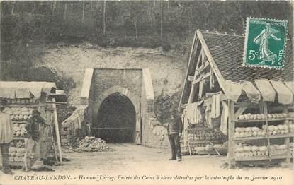 """CPA FRANCE 77 """"chateau Landon, Hameau Lorroy, entrée des caves à blanc"""""""