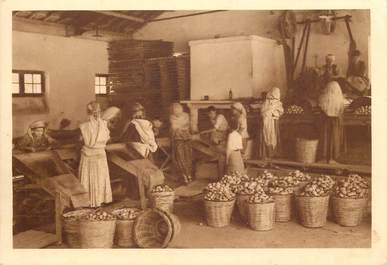"""CPSM ALGERIE """"Domaine de la Trappe de Staouëli près Alger, lavage et calibrage des pommes de terre"""""""