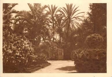 """CPSM ALGERIE """"Domaine de la Trappe de Staouëli près Alger, un coin du Parc"""""""