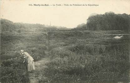 "/ CPA FRANCE 78 ""Marly Le Roi, la forêt"""