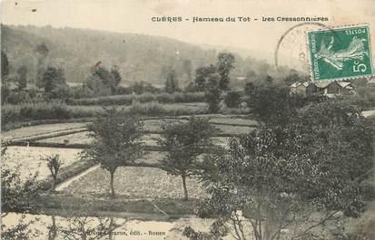 """/ CPA FRANCE 76 """"Clères, hameau du Tot, les Cressonnières"""""""