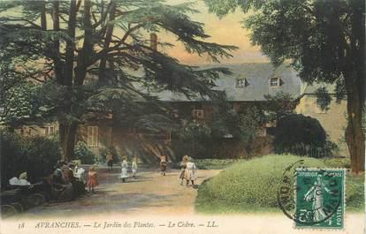 """/ CPA FRANCE 50 """"Avranches, le jardin des plantes"""""""