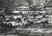 """86 Vienne / CPSM FRANCE 86 """"Poitiers Biard"""" /  GROTTES"""