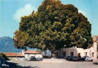"""/ CPSM FRANCE 06 """"Castellar, place de la mairie"""""""