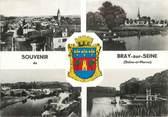 """77 Seine Et Marne / CPSM FRANCE 77 """"Bray sur Seine"""""""