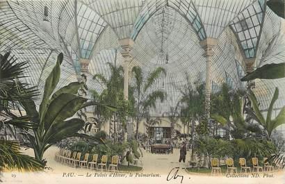 """CPA FRANCE 64 """"Pau, le palais d'Hiver, le palmarium"""""""