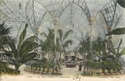 """64 PyrÉnÉe Atlantique CPA FRANCE 64 """"Pau, le palais d'Hiver, le palmarium"""""""