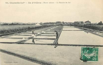 """CPA FRANCE 17 """"Ile d'Oléron, la récolte du sel"""""""