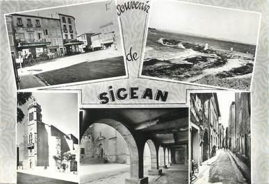 """/ CPSM FRANCE 11 """"Souvenir de Sigean"""""""