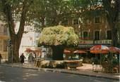 """13 Bouch Du Rhone / CPSM FRANCE 13 """"Salon de Provence, fontaine Moussue"""""""