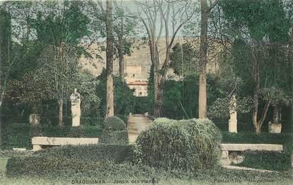 """CPA FRANCE 83 """"Draguignan, jardin des Plantes"""""""