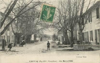 "/ CPA FRANCE 84 ""Cheval Blanc, la Cannebière"""