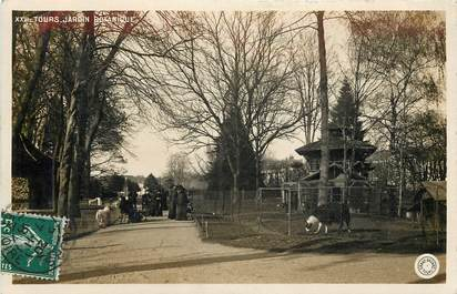 """CPSM FRANCE 37 """"Tours, Jardin botanique"""""""
