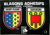 "15 Cantal / CPSM FRANCE 15 ""Saint Flour"" / BLASON ADHESIF"