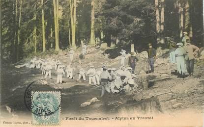 """CPA  CHASSEUR ALPIN """" Foret du Tournairet, alpins au travail"""""""