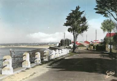 "/ CPSM FRANCE 17 ""Port des Barques, av l'Ile Madame"""
