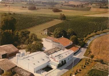 """/ CPSM FRANCE 17 """"Saint Fort sur Gironde, chais et distillerie"""""""