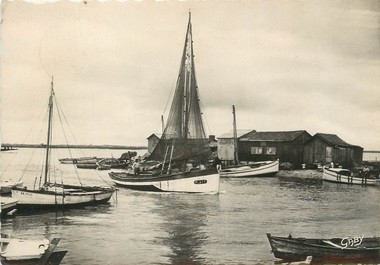 "/ CPSM FRANCE 17 ""La Tremblade, barques entrant au port"""