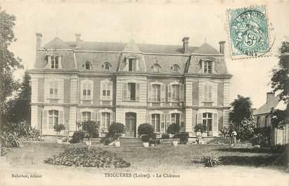 "CPA FRANCE 45 ""Triguères, le chateau"""