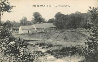 """CPA FRANCE 78 """"Nucourt, Les Cressonnières"""""""
