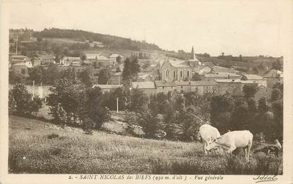 """CPA FRANCE 03  """"Saint Nicolas des Biefs, vue générale"""""""
