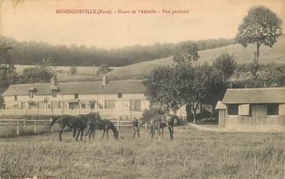 """CPA FRANCE 27 """"Ménesqueville, Haras de l'Andelle"""" / CHEVAL"""