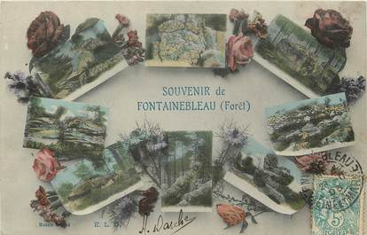 "CPA FRANCE 77 ""Fontainebleau"""