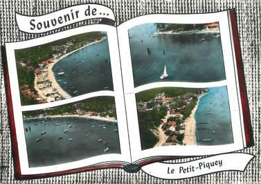 """/ CPSM FRANCE 33 """"Le Petit Piquey"""""""
