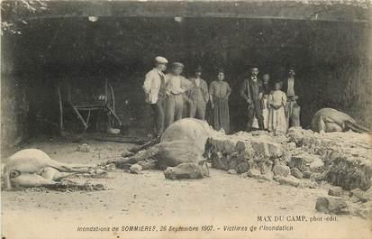 "CPA FRANCE 30 ""Inondations de Sommières, 1907"" / CHEVAL"