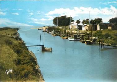 """/ CPSM FRANCE 44 """"Bourgneuf en Retz, le port du Collet"""""""