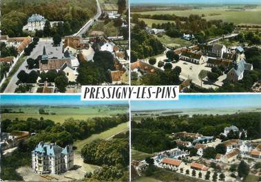 "/ CPSM FRANCE 45 ""Pressigny Les Pins"""