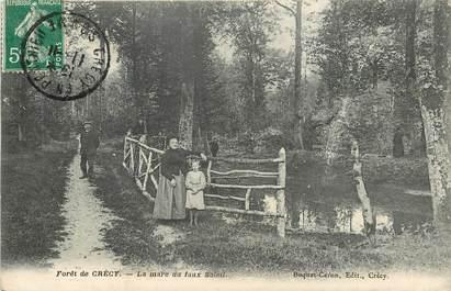 """CPA FRANCE 80 """"Forêt de Crécy"""""""