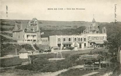 """CPA FRANCE 80 """"Bois de Cise, Côte des Mouettes"""""""