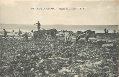 """/ CPA FRANCE 29 """"Perros Guirec, récolte du Goëmon"""" / ATTELAGE"""