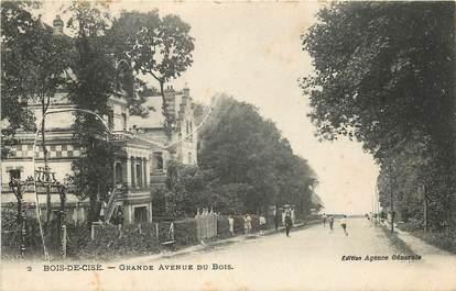 """CPA FRANCE 80 """"Bois de Cisé, grande avenue du Bois"""""""