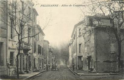 """/ CPA FRANCE 13 """"Pelissanne, allées de Crapponne"""""""