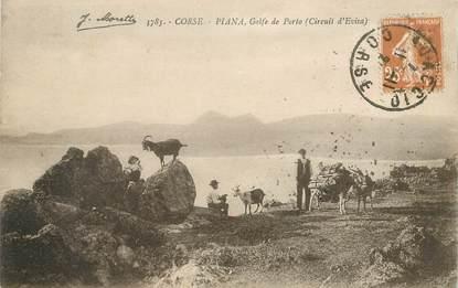 CPA CHEVRE / CORSE Piana