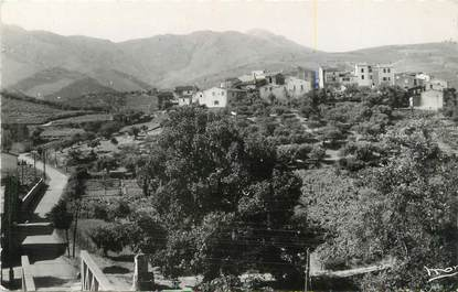 "CPSM FRANCE 66 ""Banyuls, village Le Puig Del Mas"""