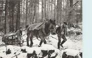 """88 Vosge / CPSM FRANCE 88 """"Les Vosges Autrefois, nr 33, faut se faire aider par le cheval"""""""