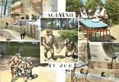 """59 Nord / CPSM FRANCE 59 """"Maubeuge, souvenir du zoo"""""""