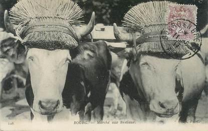 """CPA FRANCE 01 """"Bourg en Bresse, le marché aux bestiaux"""""""