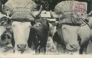 """01 Ain CPA FRANCE 01 """"Bourg en Bresse, le marché aux bestiaux"""""""