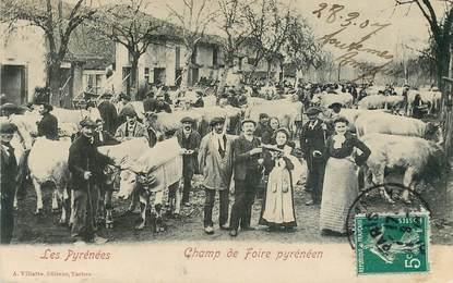 """CPA FRANCE 65 """"Les Pyrénées, le champ de foire"""""""