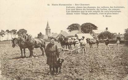 """/ CPA FRANCE 14 """"Notre Normandie, ses charmes"""" / CHEVAL"""